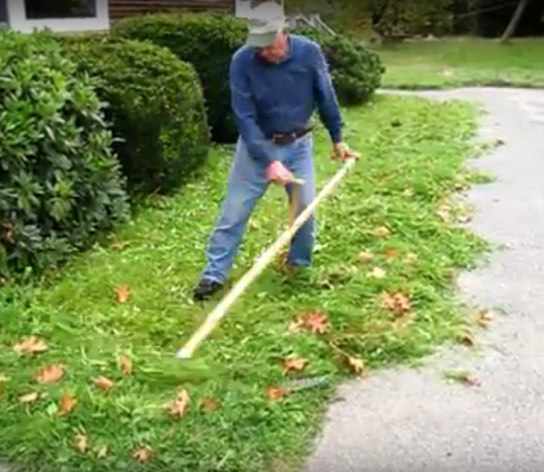Video: Lawn mowing with a European scythe