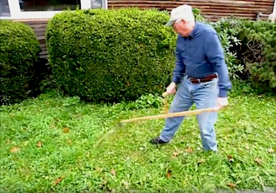 Tips on mowing the lawn with a scythe