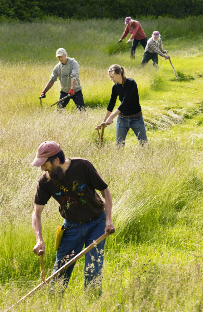 Great article on the Scythe from the Portland Press Herald