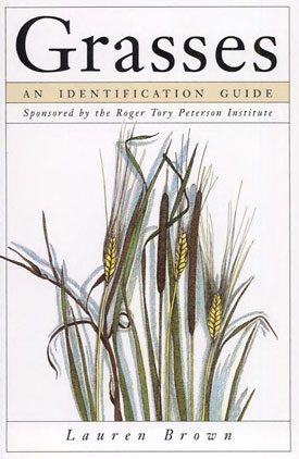 Identification of Grasses?
